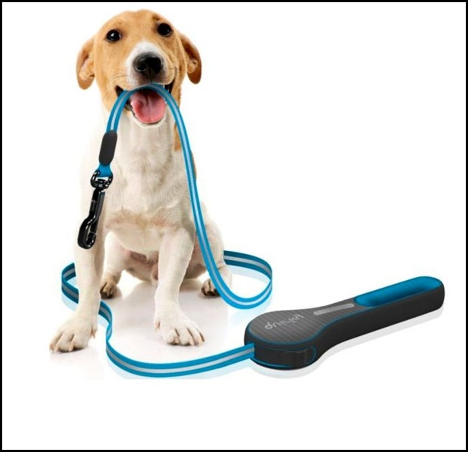 Dog Leash Types
