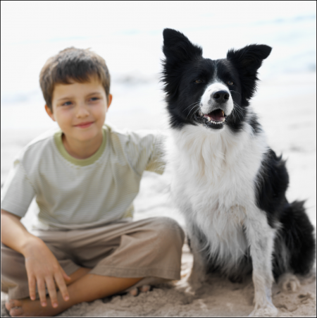 Dog Pics For Kids