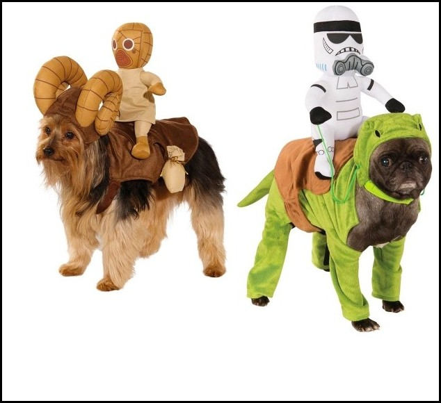 Dog Star Wars Halloween Costumes