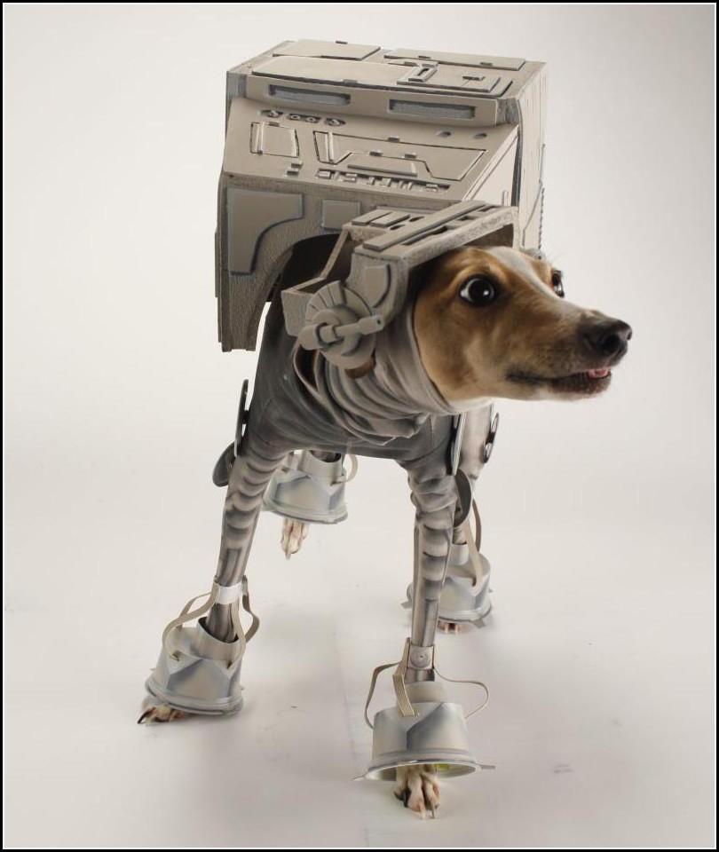 Dog Star Wars
