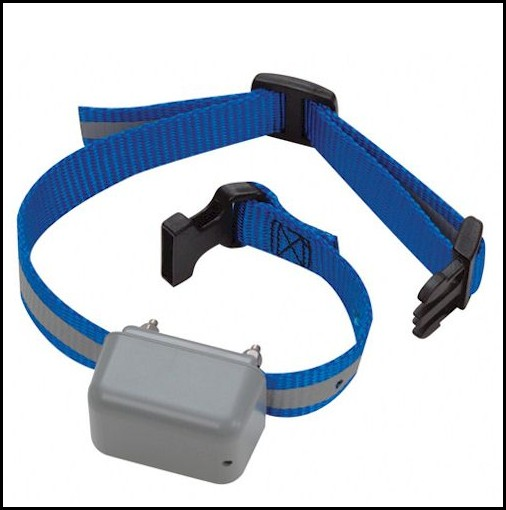 Electronic Dog Collars At Petsmart