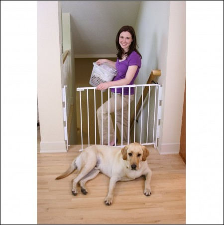 Gates For Dogs On Stairs