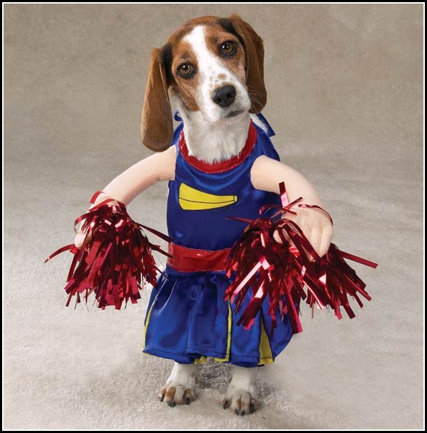 Hound Dog Costume
