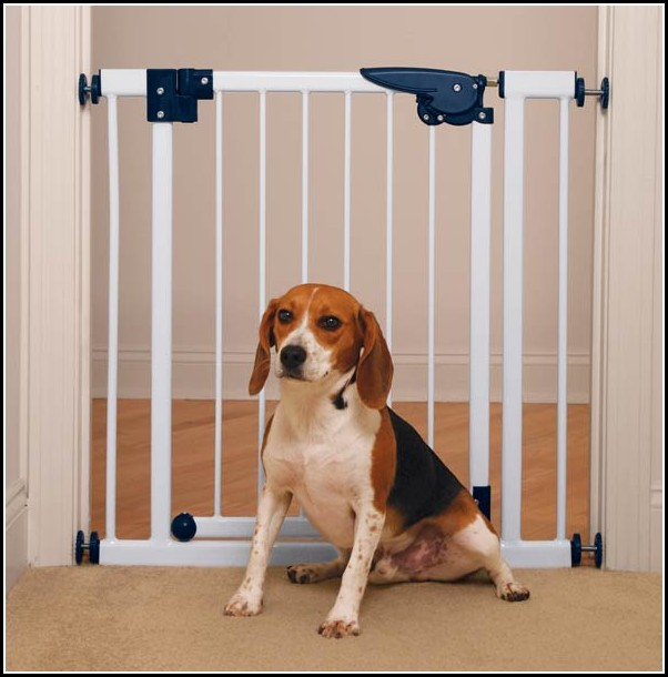Indoor Gates For Dogs