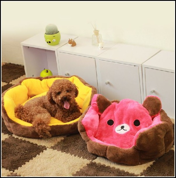 Dog Couches For Small Dogs
