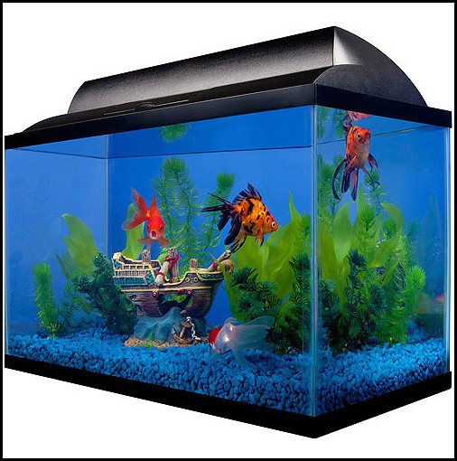 Airstone For Fish Tank Walmart