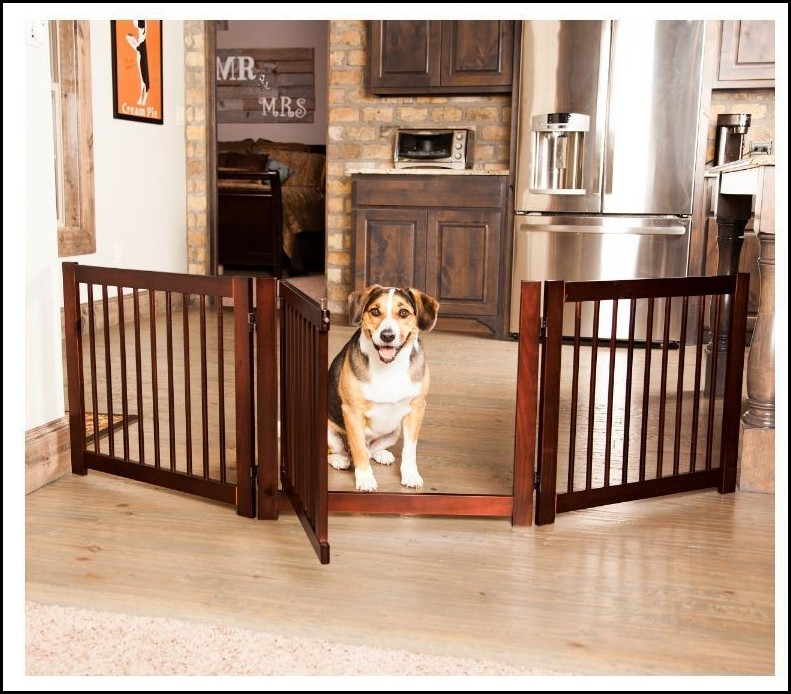 Dog Gates For The House