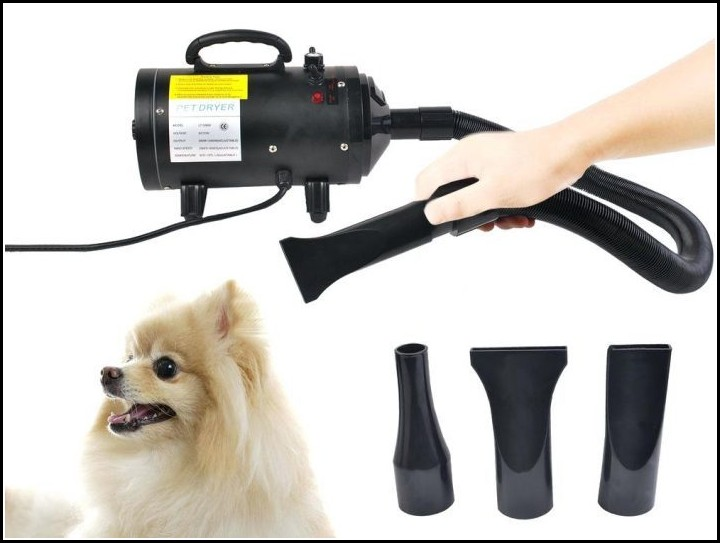 Dog Hair Dryer Gif