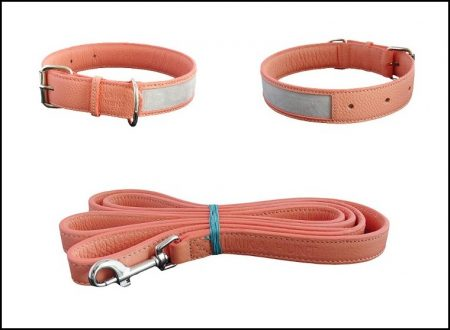 Luxury Dog Collars And Leads