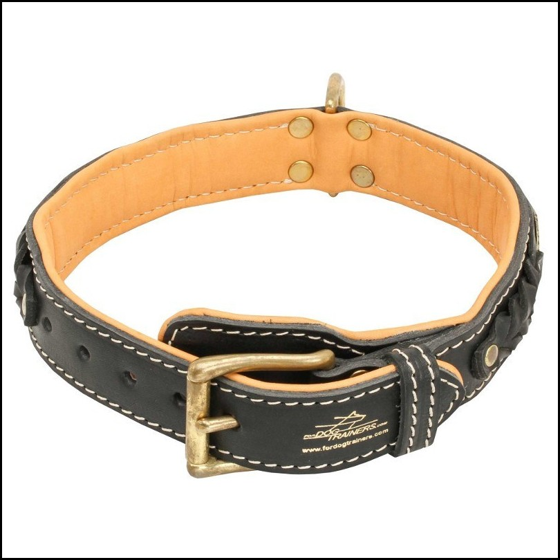 Luxury Dog Collars For Large Dogs