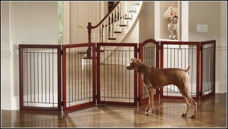 Wide Dog Gates For The House